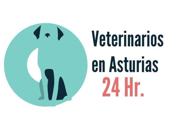 Asturias, Veterinarios 24 Horas
