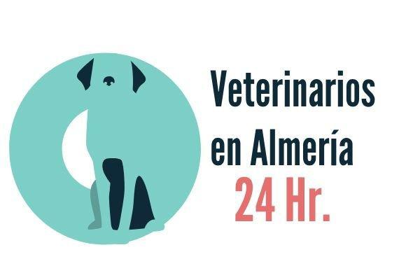 Veterinarios Urgencias en Almeria